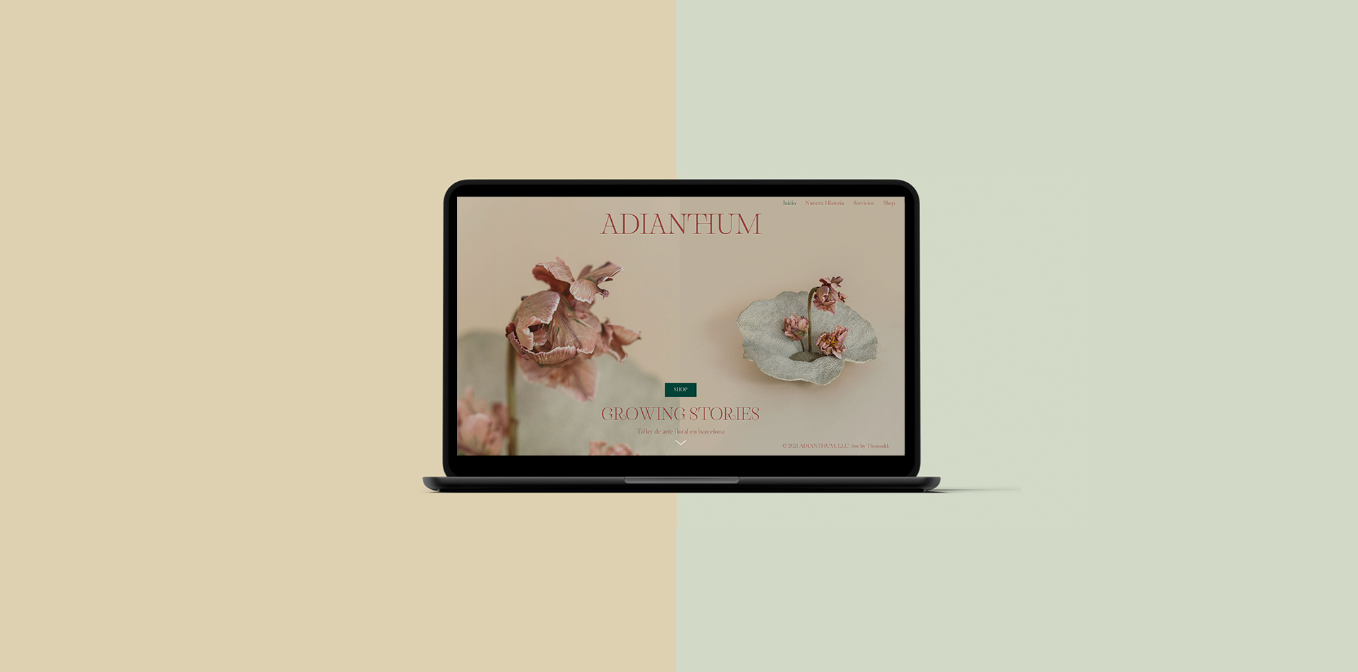 1_web screen_adianthum
