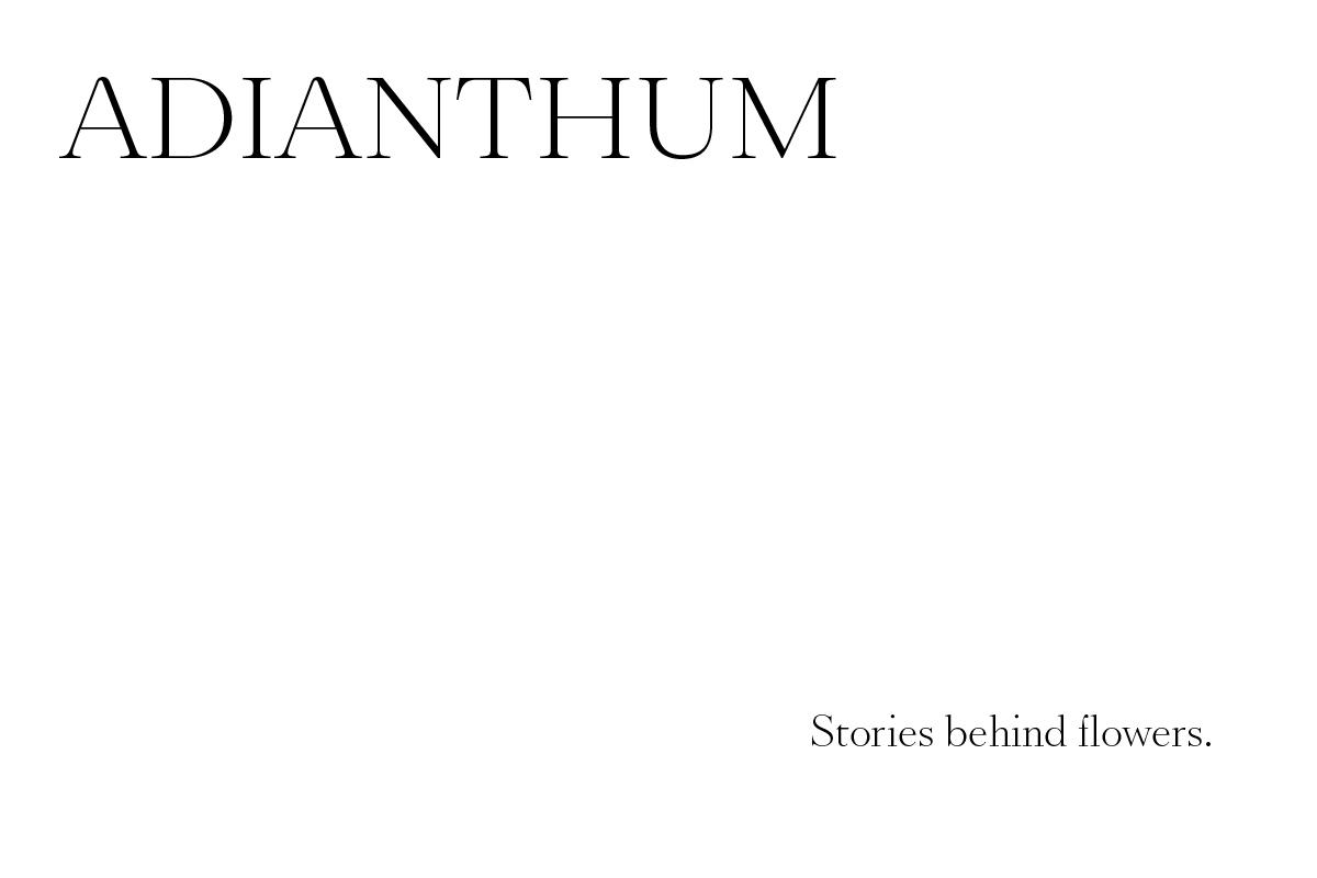 ADIANTHUM - EN
